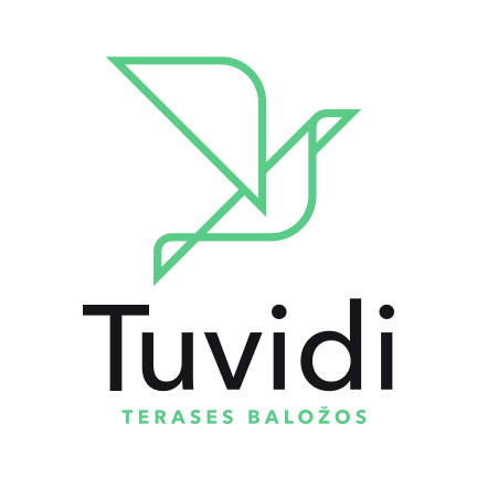 Image result for tuvidi lv